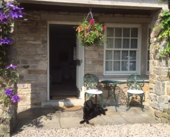 Bess sat outside a courtyard bedroom enjoying the sunshine.