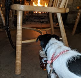 Titch enjoying a drink in front of the fire.